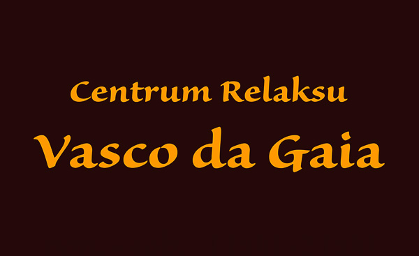 vdg-logo-sponsor-1